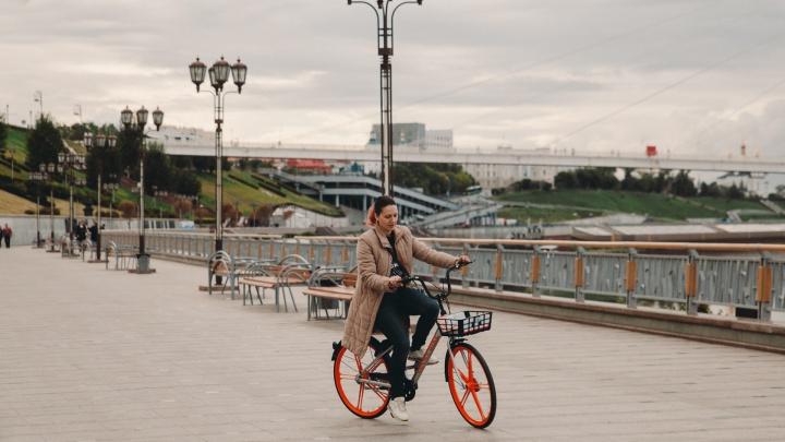 Велосипед vs самокат: сколько стоит аренда двухколесного транспорта вТюмени