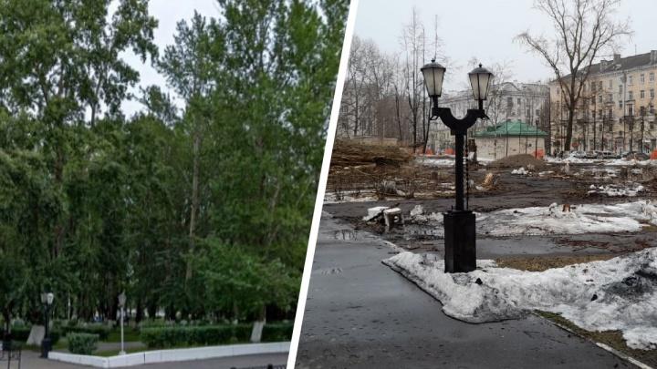 «Вышел — и нет сквера»: зачем в центре Северодвинска вырубили десятки деревьев