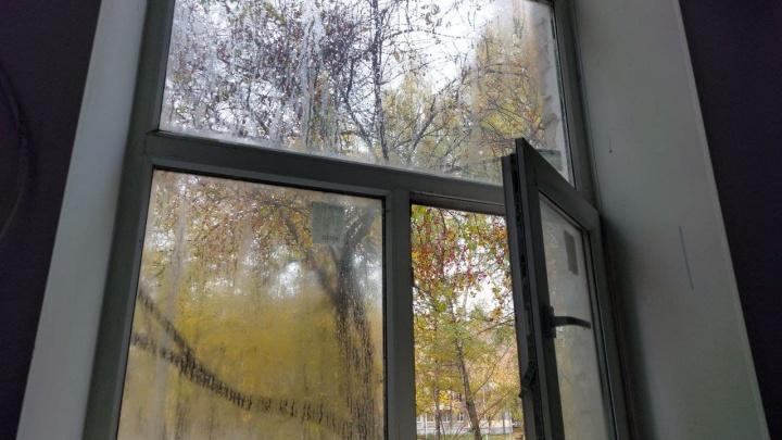 «Кранты легким, очень здорово». Дом на Куйбышева каждый год превращается в рассадник черной плесени
