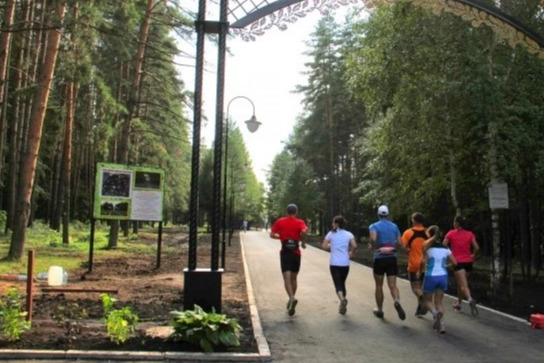 В уфимском Парке Лесоводов восстановят освещение в ночное время суток
