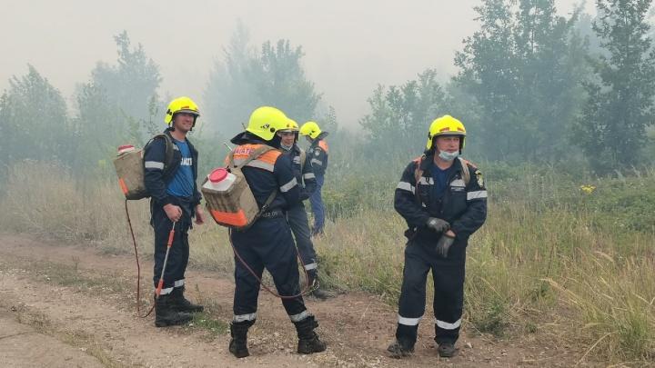 МЧС удалось локализовать крупный лесной пожар в Тольятти