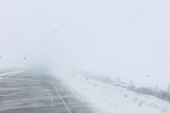 По дорогам не проехать, видимости нет. В Челябинской области объявлено экстренное предупреждение из-за метели