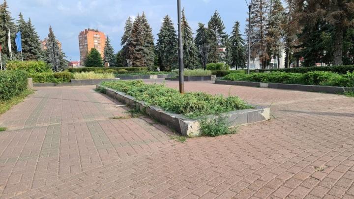 В автозаводской администрации планируют отремонтировать площадь Киселёва. Сроков при этом не называют