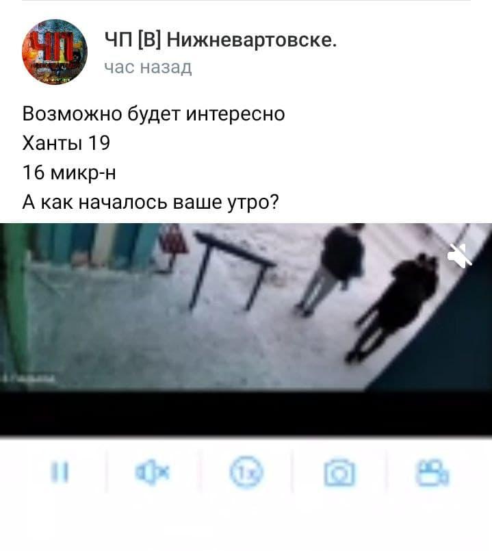 """Владелец видеозаписи пишет, что она снята на <nobr class=""""_"""">Ханты-Мансийской,19</nobr>"""