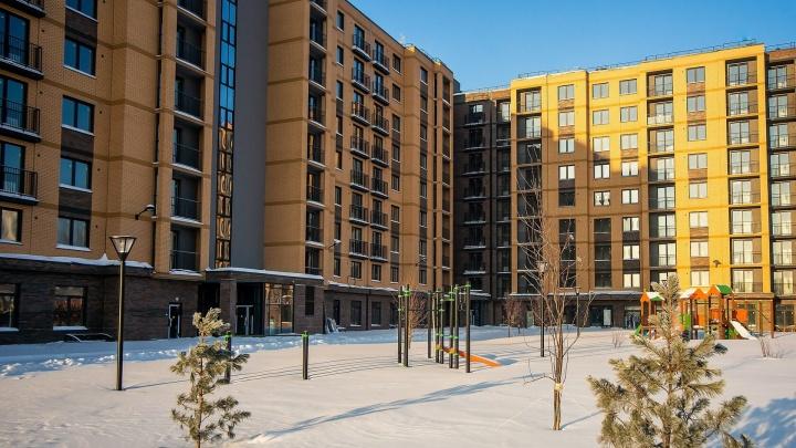 На первом этаже будут магазины и кафе: рядом с сосновым бором строят ЖК — цены от 2,4 млн за квартиру
