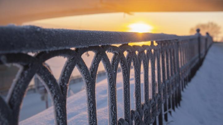 Февральские морозы в марте: в Ярославской области резко похолодает