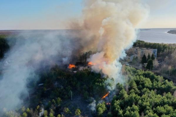 В Некрасовском районе сгорела часть леса и три дома
