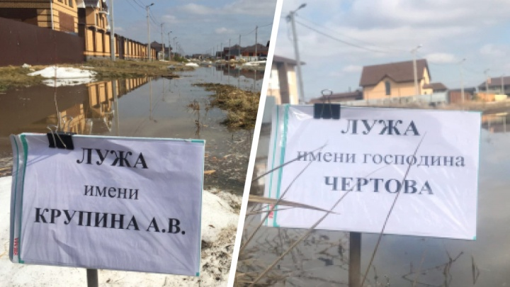 Флешмоб продолжается: жители Тюменского района назвали лужу в честь депутата областной думы