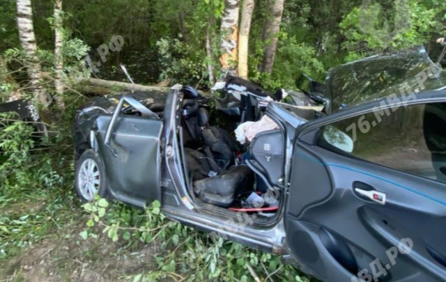 Пострадали четверо: в Ярославской области легковушка вылетела с дороги и врезалась в дерево