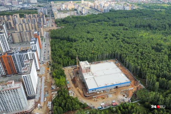 Зеленый участок между Тополиной аллеей, ЖК «Ньютон» и строящимся олимпийским хоккейным центром «Шайба» могут отдать под новый ЖК и каток