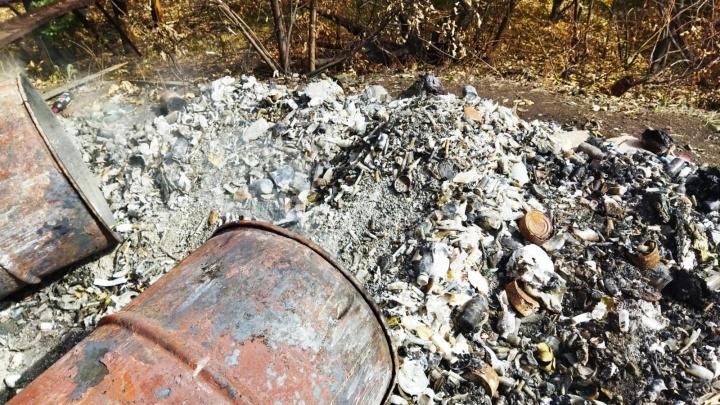Зараженные отходы и использованные памперсы: что находилось на тайной свалке в Уфе