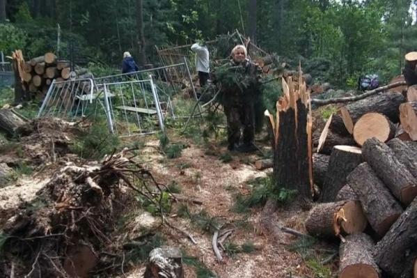 Сломанные ветром деревья пришлось распиливать прямо на кладбище