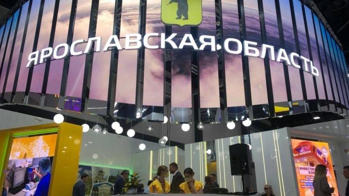 Ярославский мискантус покорит Петербургский экономический форум