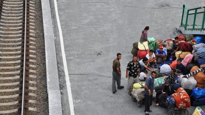 Красноярцы получили условные сроки за нелегальный ввоз 3,5 тысячи мигрантов