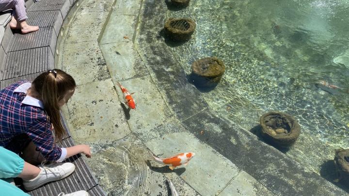 «День солидарности фонтанов». В парке «Краснодар» отключили все водоемы