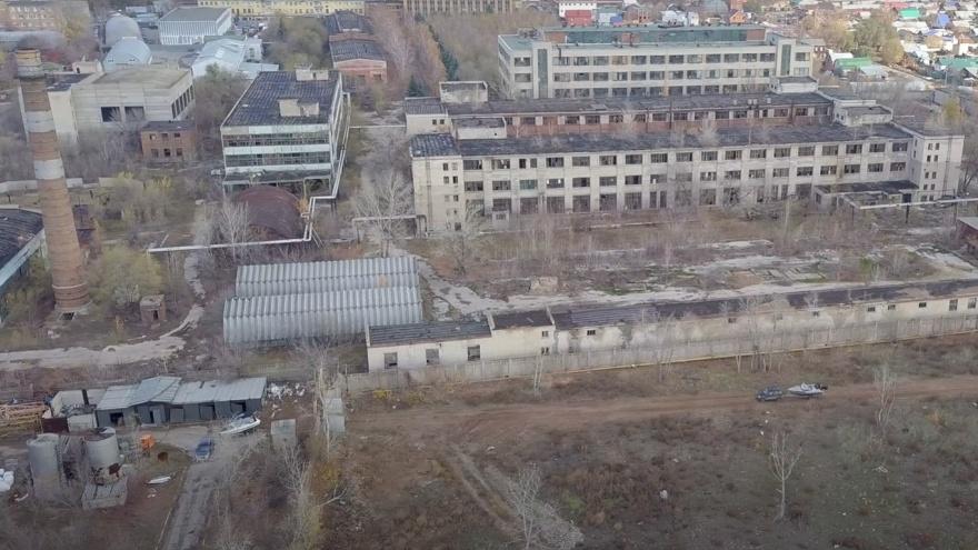 У родственницы олигарха Шаповалова отберут самарский завод