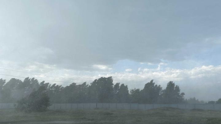 В Курганской области в эти выходные ожидаются дожди, их сменит жара до +36 градусов