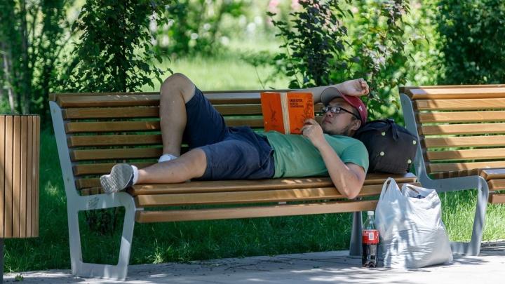 Впереди четыре дня ада: в МЧС предупредили волгоградцев об аномальной жаре до +42 градусов