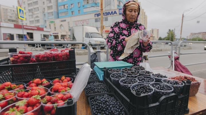 «Люди ждут, что будет дешевле». Какие ягоды и за сколько продают на улицах Челябинска