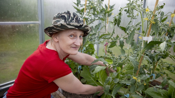 Зона рискованного земледелия: куда посадить томаты, огурцы и редис в мае, чтобы не потерять урожай