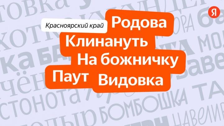 «Видовка, паут, на божничку»: найдены слова, по которым красноярцев можно вычислить среди жителей других регионов