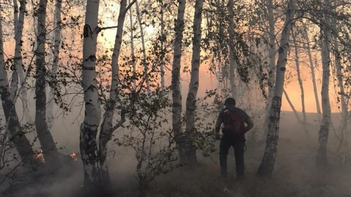 В Башкирии при тушении пожара пострадал волонтер. Он оказался в западне из-за заглохшей машины