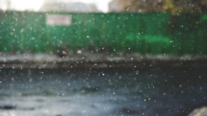 Тюменцев предупреждают о непогоде. Ожидается сильный ветер до 20 метров в секунду с мокрым снегом