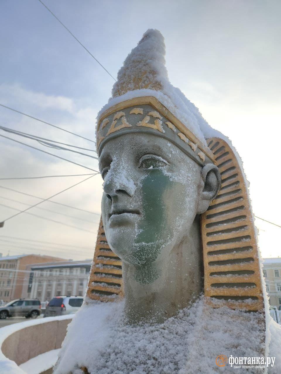 автор фото Михаил Огнев / «Фонтанка.ру»&nbsp;<br>