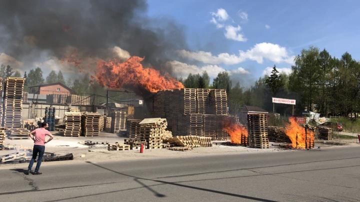 «Сгорают, как спички»: в Ярославле загорелся склад с деревянными палетами. ДПС перекрыла дорогу