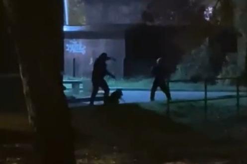 В Северодвинске мужчина, называющий себя полицейским, жестоко избил собаку и ударил ее хозяина