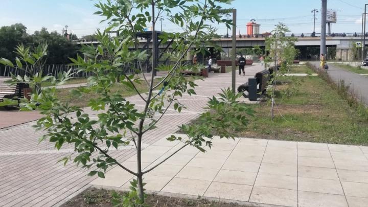 В Омске приступят к третьему этапу благоустройства набережной Оми