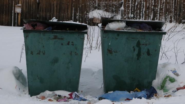 Активисты Архангельской области будут следить за замерами накопления отходов
