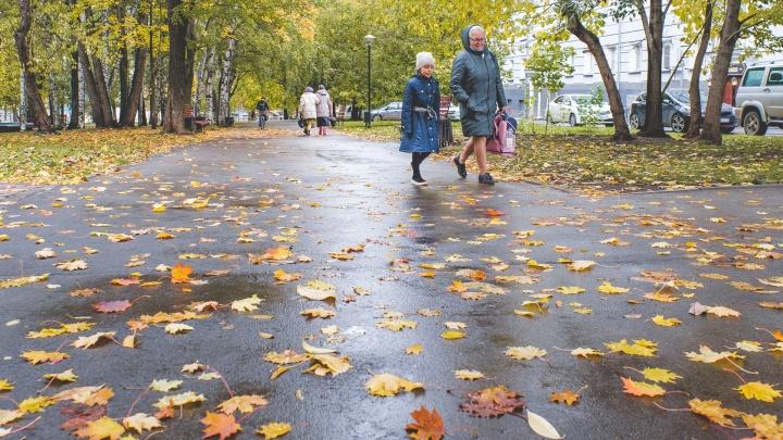 Сильное похолодание и возможное бабье лето: в ГИС-центре рассказали о погоде в Прикамье на сентябрь