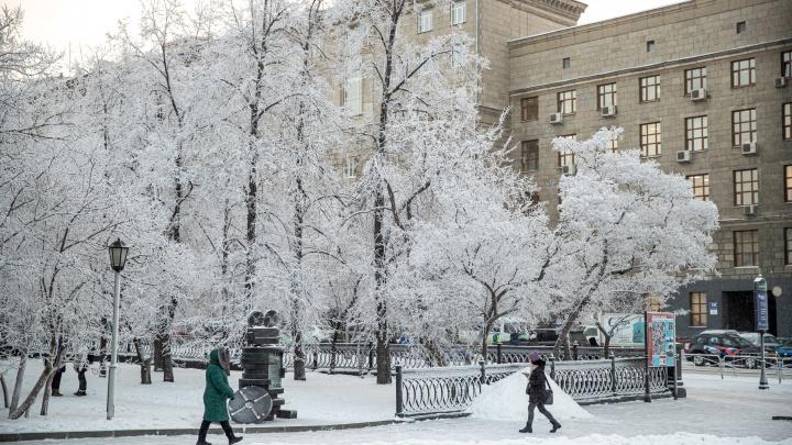 Новосибирск снова ждут морозы — синоптики рассказали, когда температура опустится до -23 градусов