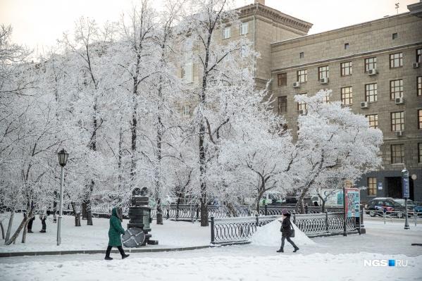 В Новосибирск придет похолодание, но к 2 февраля в городе снова потеплеет