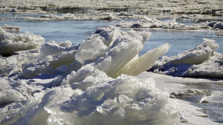 Гидрологи назвали дату начала ледохода в районе Сургута и Ханты-Мансийска