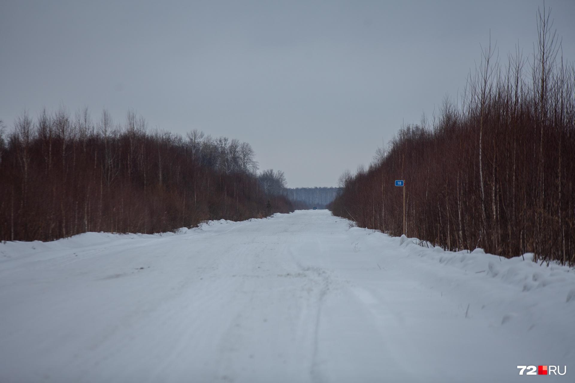 Дальняя дорога ведет в Кускургуль: она проходит между болот, а иногда и по ним