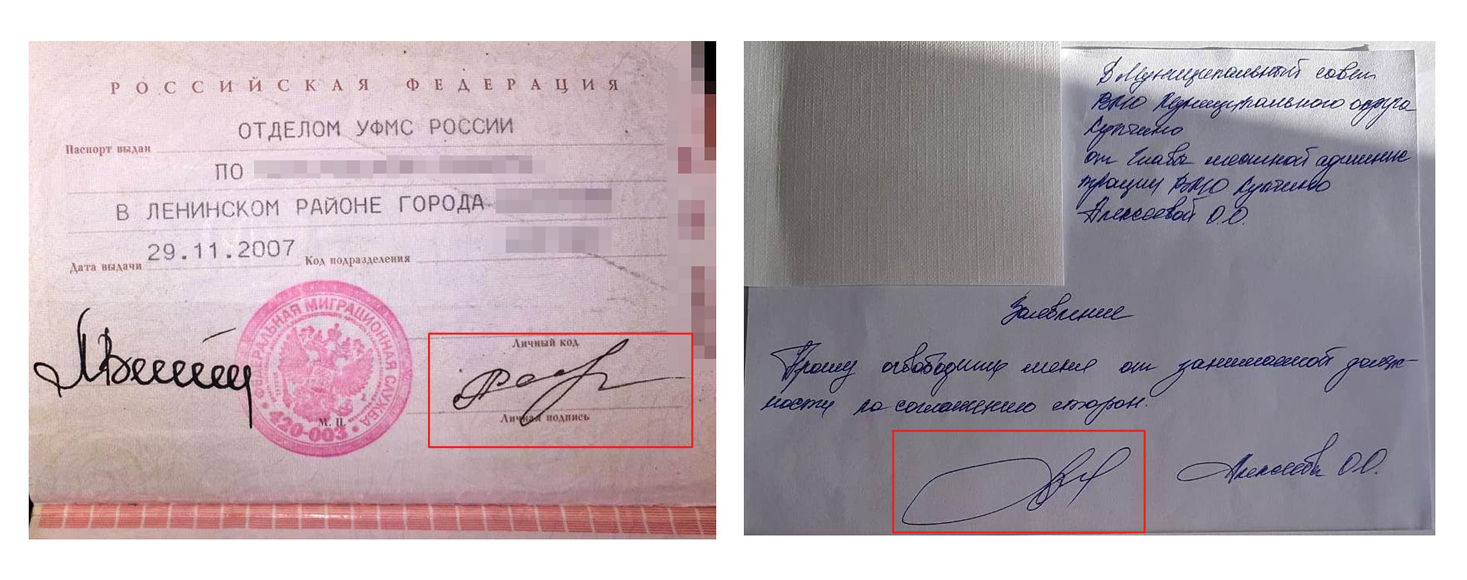фото паспорта предоставлено Ольгой Алексеевой, заявление — муниципальным советом Купчино