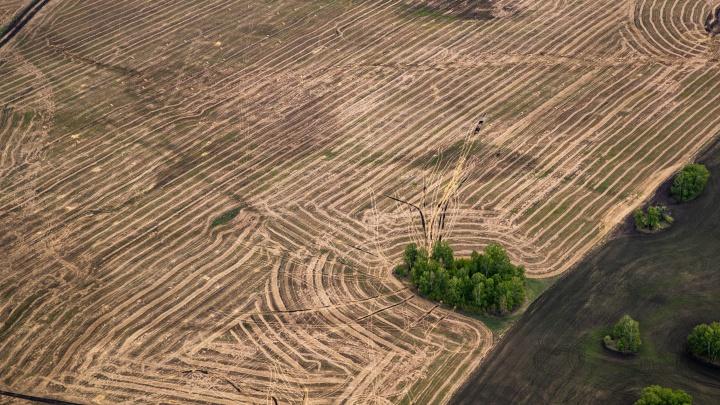 Фотограф НГС поднялся в небо на самолете лесоохраны — смотрим необычные кадры с интересными пейзажами