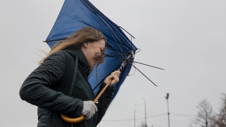 Экстренное предупреждение МЧС: в Ярославле резко испортится погода. Прогноз синоптиков