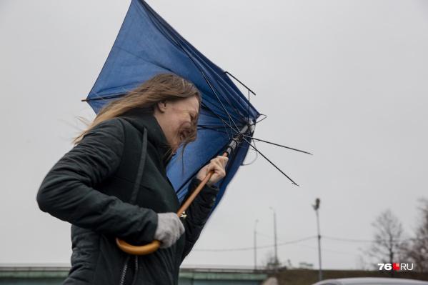 В Ярославской области усилится ветер
