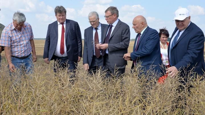 «Зерно Сибири»: как экспортные амбиции Омской области обернулись схваткой двух справедливоросов