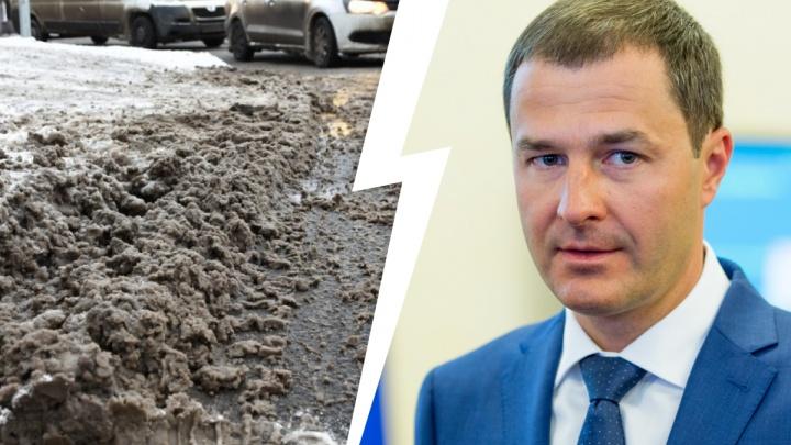 В Ярославле фотограф засудила редакцию 76.RU за коллажи с мэром города в снежной жиже