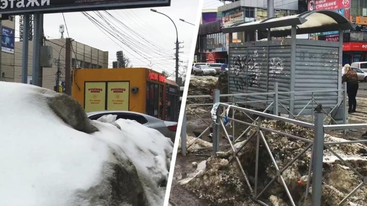 Сибирячка отправила Путину видео о грязных улицах Новосибирска. Угадайте, кто будет разбираться с этой жалобой