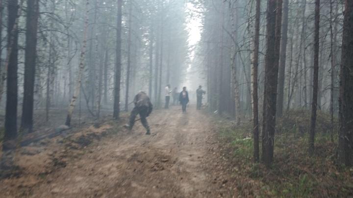 #НаташаМыГорим, часть вторая. В ХМАО допустили около 100 нарушений при подготовке к сезону пожаров