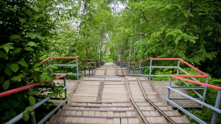 «Пьянка на природе». Как оценивают новосибирцы городские парки (где — ласковые белочки, а где — куча полицейских)