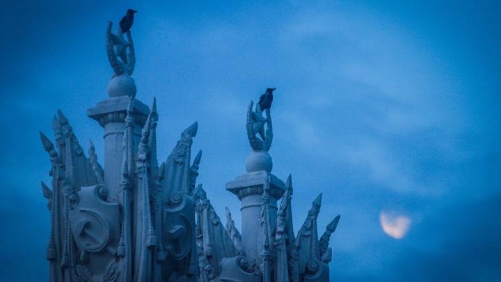 Гюльчатай, открой личико! Волгоградец запечатлел убегающую скромнягу-луну в предрассветный час