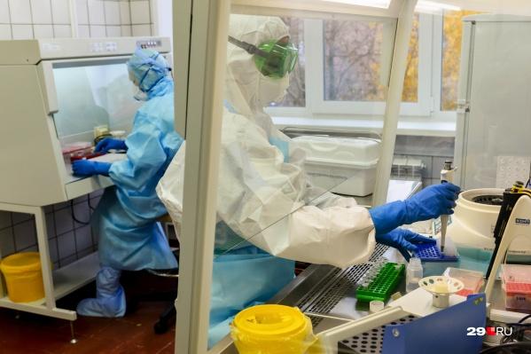 Всего в Архангельске взято 1326 смывов для того, чтобы найти британский штамм вируса