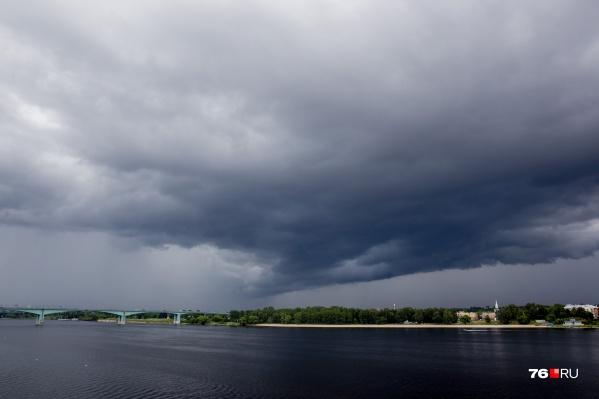В Ярославле 24 мая поднимется сильный ветер