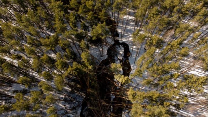 Водоканал оштрафуют за фекальный потоп в Гилёвской роще